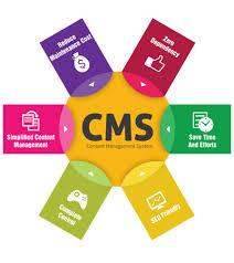 schema sito web con cms